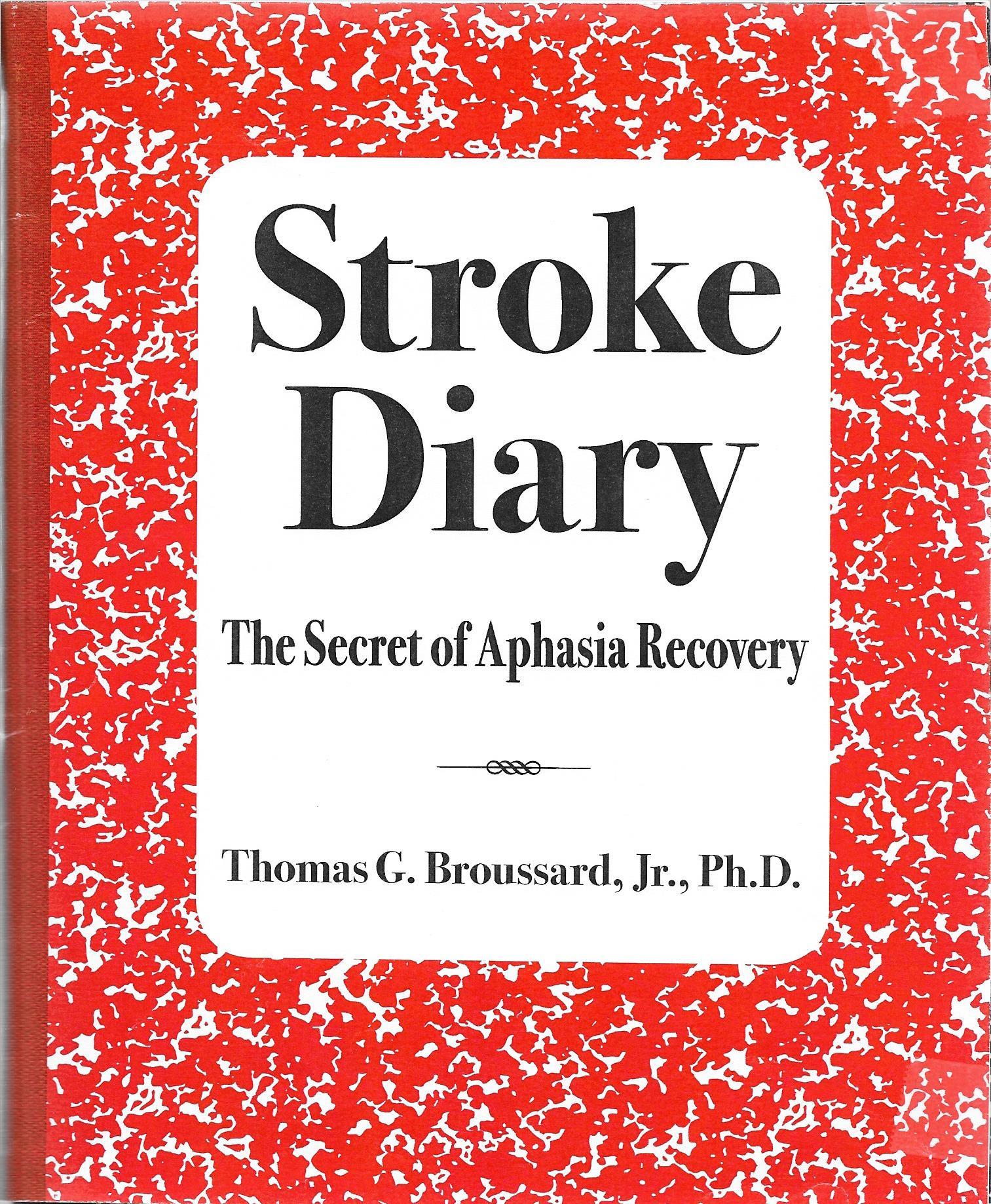 Stroke Diary Vol 2 Cover